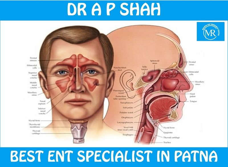 ENT Specialist in Patna